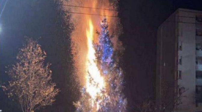 'Loro' incendiano albero di Natale a Lione