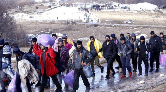 La sinistra digiuna a brioche per impedire i respingimenti dei clandestini islamici in marcia verso Trieste