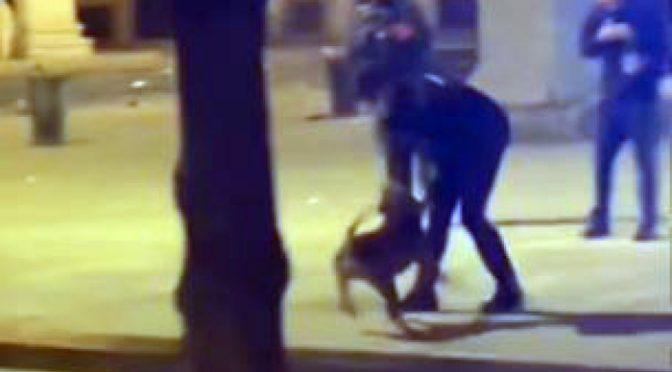 Guerriglia afroislamica a Milano: cani aizzati contro carabinieri che sparano, arrestato africano – VIDEO