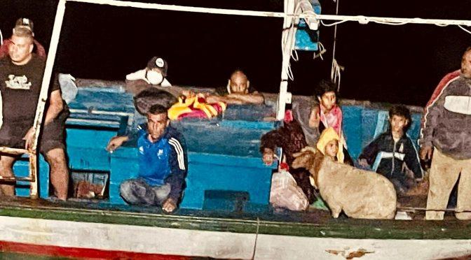 Raffica di barconi a Lampedusa dopo quello con la pecora: altri 300 clandestini